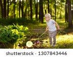 cute little boy catches... | Shutterstock . vector #1307843446