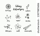 culinary herbs and spices set | Shutterstock .eps vector #1307885686