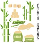 sugar plant agricultural crops. ... | Shutterstock .eps vector #1307890396
