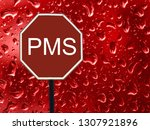 the road sign stop pms and red... | Shutterstock . vector #1307921896