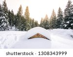 Chalet Submerged By Snow In Th...