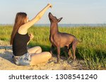 Stock photo young beauyoung girl walking play with her dog xoloitzcuintli on sand beach at sunset playing 1308541240