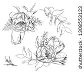 black and white pencil sketch... | Shutterstock . vector #1308553123
