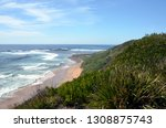 long reef headland  sydney nsw... | Shutterstock . vector #1308875743