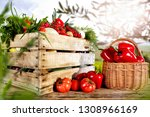 table background and spring... | Shutterstock . vector #1308966169