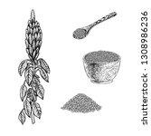 hand drawn set of amaranth... | Shutterstock .eps vector #1308986236