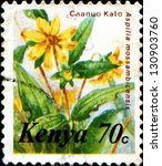 Small photo of KENYA - CIRCA 1983: A stamp printed in Kenya shows Chanuo Kato - Aspilia mossambicensis, circa 1983
