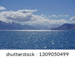 nature scene of landscape...   Shutterstock . vector #1309050499