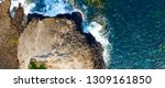 cape schanck in mornington... | Shutterstock . vector #1309161850