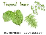 set of realistic tropical... | Shutterstock .eps vector #1309166839