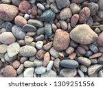 rocks near the sea  beautiful... | Shutterstock . vector #1309251556