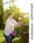 middle age female gardener.... | Shutterstock . vector #1309374169