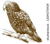 vector antique engraving... | Shutterstock .eps vector #1309375939