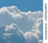 fluffy white cloud above clear...   Shutterstock . vector #1309562899