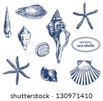 set of various hand drawn sea...   Shutterstock .eps vector #130971410