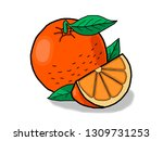 ripe orange with a cut slice... | Shutterstock .eps vector #1309731253