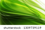 abstract natural background... | Shutterstock . vector #1309739119