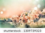 spring card with blooming with... | Shutterstock . vector #1309739323