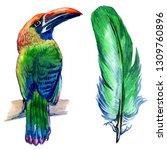 watercolor exotic birds... | Shutterstock . vector #1309760896
