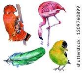 watercolor exotic birds... | Shutterstock . vector #1309760899