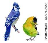 watercolor exotic birds... | Shutterstock . vector #1309760920