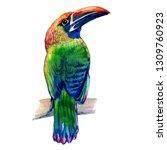 emerald toucan. watercolor... | Shutterstock . vector #1309760923