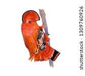 guianan cock of the rock.... | Shutterstock . vector #1309760926