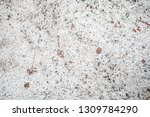 surface of concrete wall for... | Shutterstock . vector #1309784290