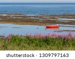 Red Rowboat In Tidal Pool On A...