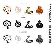 vector design of mammal and...   Shutterstock .eps vector #1309800226