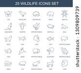 25 wildlife icons. trendy... | Shutterstock .eps vector #1309809739