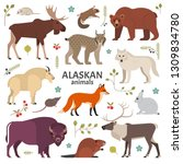 Alaskan Animals. Vector...