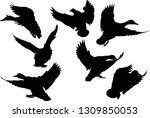 illustration with ducks... | Shutterstock .eps vector #1309850053