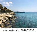 sea view in fjord | Shutterstock . vector #1309853833