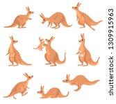 Cute Brown Kangaroo Set ...