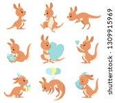 Cute Baby Kangaroo Set  Brown...