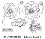 set of the vintage hand drawn... | Shutterstock .eps vector #1310011396