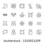 symptoms of abdominal disease...   Shutterstock .eps vector #1310021209