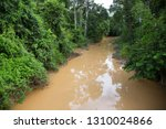 typical rain forest river...   Shutterstock . vector #1310024866
