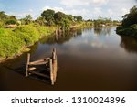 typical rain forest river...   Shutterstock . vector #1310024896