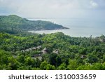 flora and fauna of the tropical ... | Shutterstock . vector #1310033659