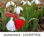 snowdrops and martenitsa.... | Shutterstock . vector #1310057926