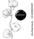 branch of pure cotton  vector | Shutterstock .eps vector #1310082049
