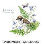 watercolor detailed... | Shutterstock . vector #1310303059