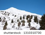 view of the mountains around... | Shutterstock . vector #1310310730