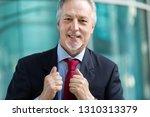 mature businessman portrait... | Shutterstock . vector #1310313379