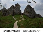billcycle huge stone gray lies... | Shutterstock . vector #1310331070