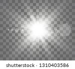 special lens flash  light... | Shutterstock .eps vector #1310403586