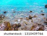 beach rock summer blue...   Shutterstock . vector #1310439766