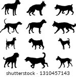 dogs silhouettes collection 2   ... | Shutterstock .eps vector #1310457143